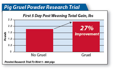 Pig gruel research trial